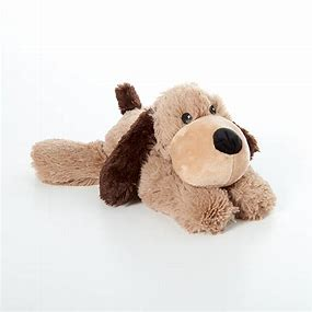 intelex dog